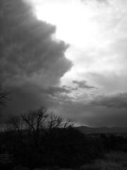 Cielo y Terra