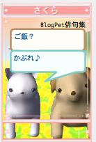 Blogpets, Shichi-no-suke and Sakura.