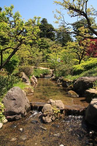 流水穿樹庭