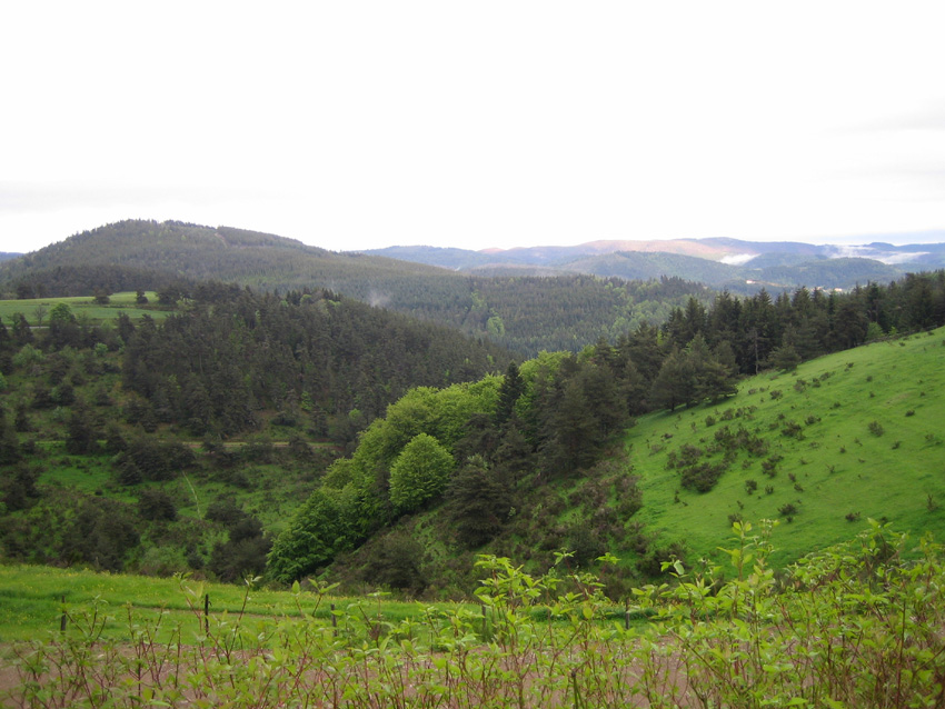 Regis Marcon view