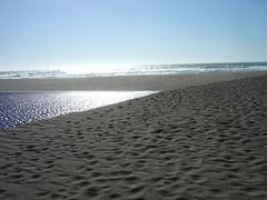 Abbotts Lagoon - Beach
