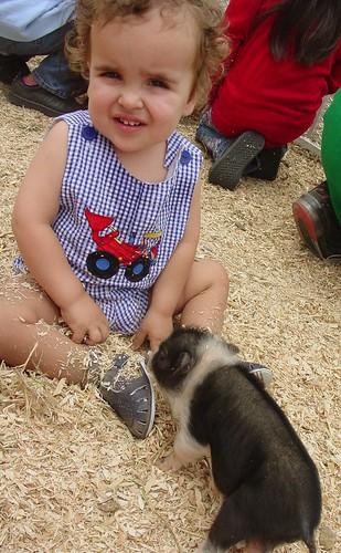 Piggy Babies
