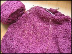 Paisley shawl thing progress