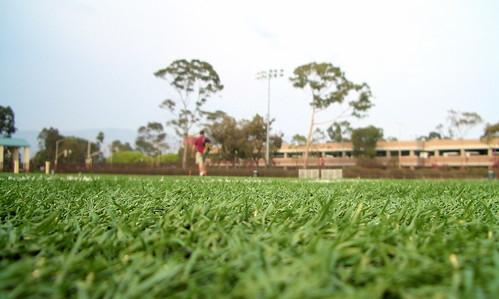 Rob field