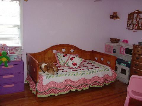 vannahs room1