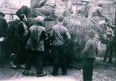 44 Champagney - char du 1er escadron - Alain Jacquot Boileau