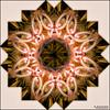 25064248097_5ceaee2213_t