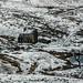 Pennine Snow - Derelict House