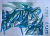 25533851978_90a754ec83_t