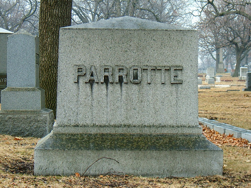 This is an EX-PARROTTE!