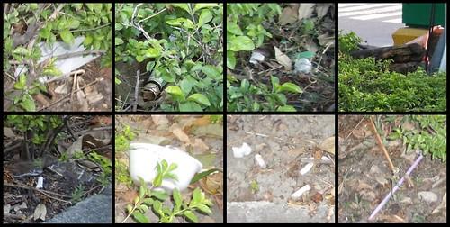 Kaohsiung Trash