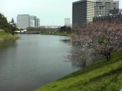 kokyo_4