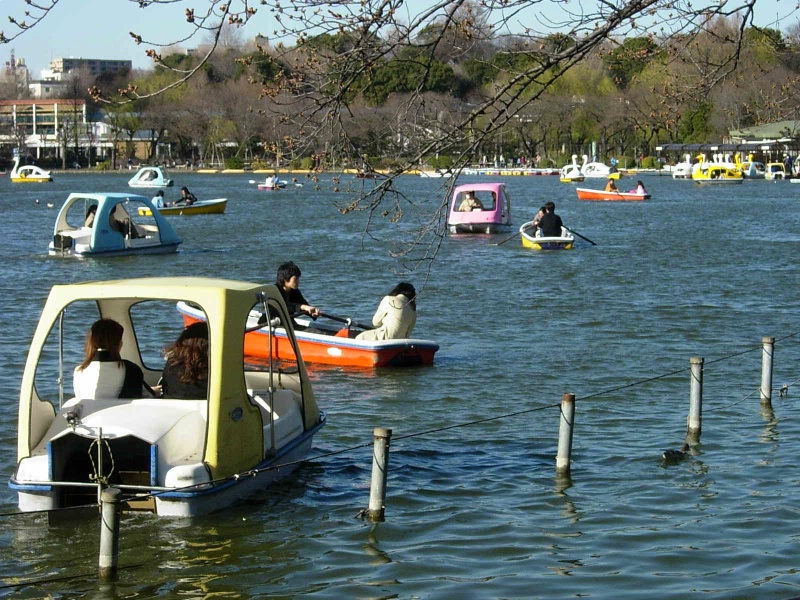 boats in Shinobazu pond