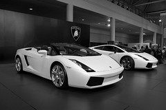 Lamborghini's at the Toronto Auto Show