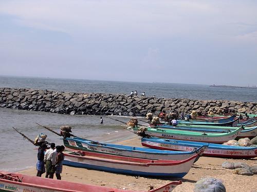 Row, row, row of boats.