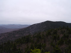 View from Mt. Roosevelt's Summit (2)