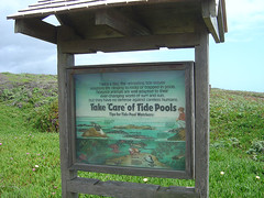 Tide Pools Sign