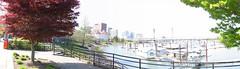 willamette_river