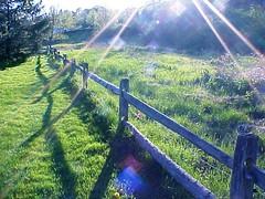 sunray fence SC
