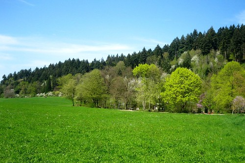 Günterstal landscape in April