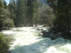 Yosemite Fall Creek