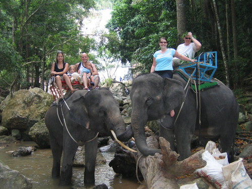 elephant_all_1
