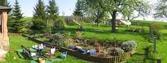 Frühling macht sich im Garten breit