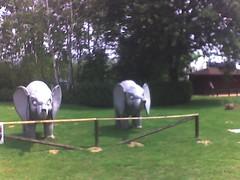 Elefinti