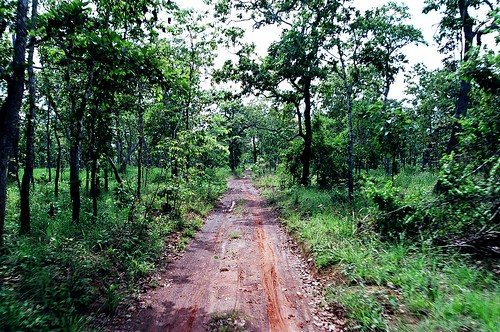 Road to Preah Khan temple, Preah Vihear province