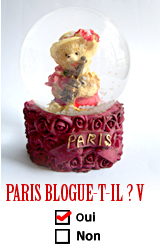 Paris blogue-t-il? V