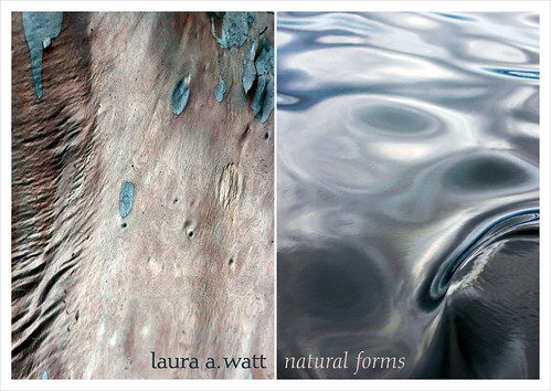 Flyer for Laura A. Watt's Natural Forms show