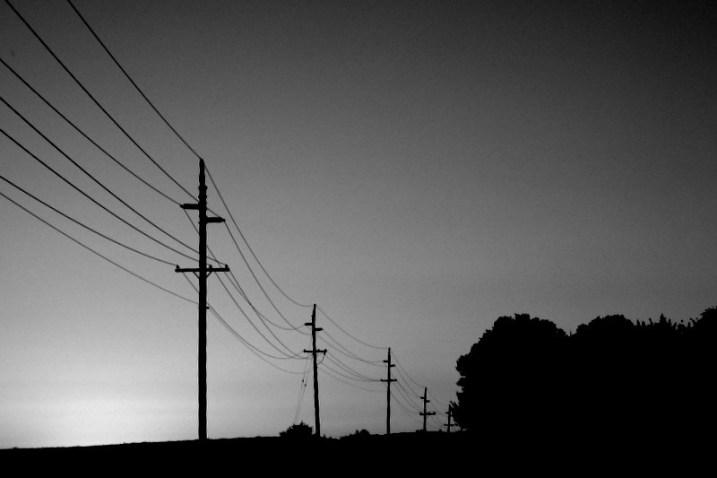 telephone lines at dusk
