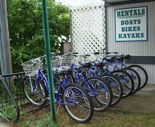 Comfort Bikes for Rent