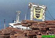madera-procedente-de-talas-ile