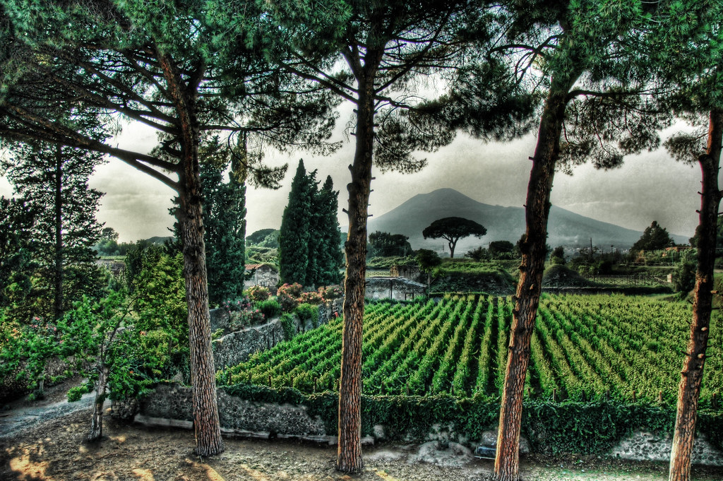 Pompeii Fertile Garden under the Shadow of Vesuvius Stuck in Customs