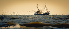 Fischkutter photo by FotoByOliver