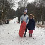 First time sledging in a while<br/>20 Mar 2018