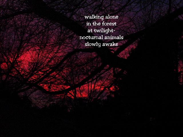 walkingalone2