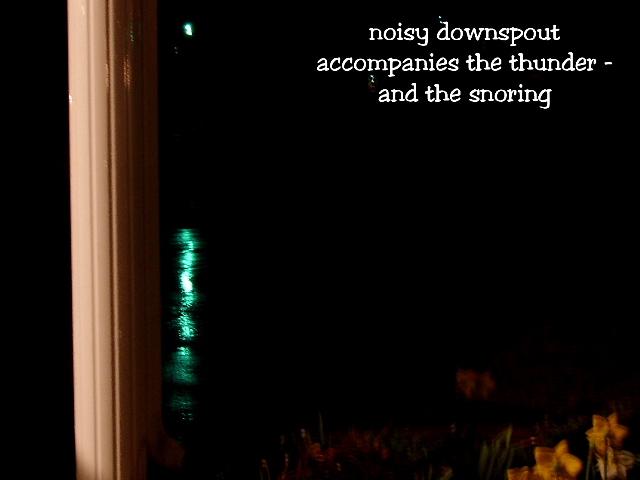 noisydownspout2