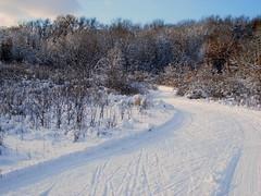Hyland Trails
