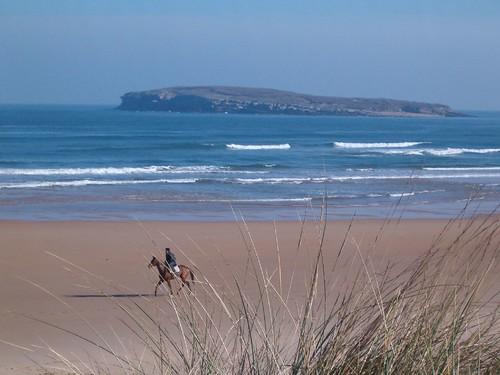 113450267 135fd9a674 Las olas de hoy Jueves, 16 de Marzo de 2006  Marketing Digital Surfing Agencia