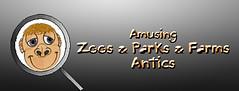 Zoo&Parks&Farms Creatures' Spotlights