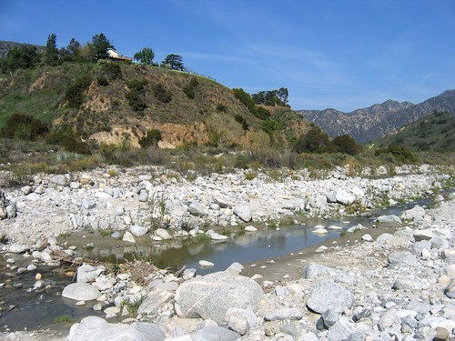 Tujunga Wash 169