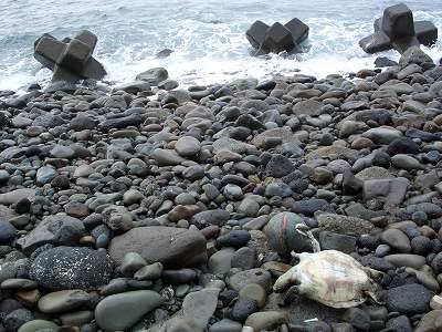 20051217 海岸