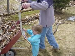 helping rake leaves 3