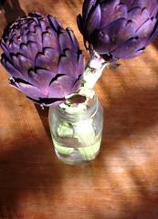 purple Sicilian artichokes