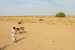 Wicked Hot Desert 1, Jaisalmer, Rajasthan, India Captured April 12, 2006.