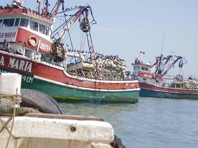 Barcos-1