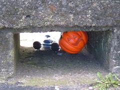 pumpkin wedged in seawall