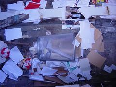 Pjöni und der Mülleimer 01